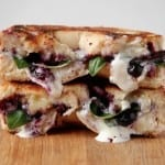 bagel grilled cheese filled with blueberries