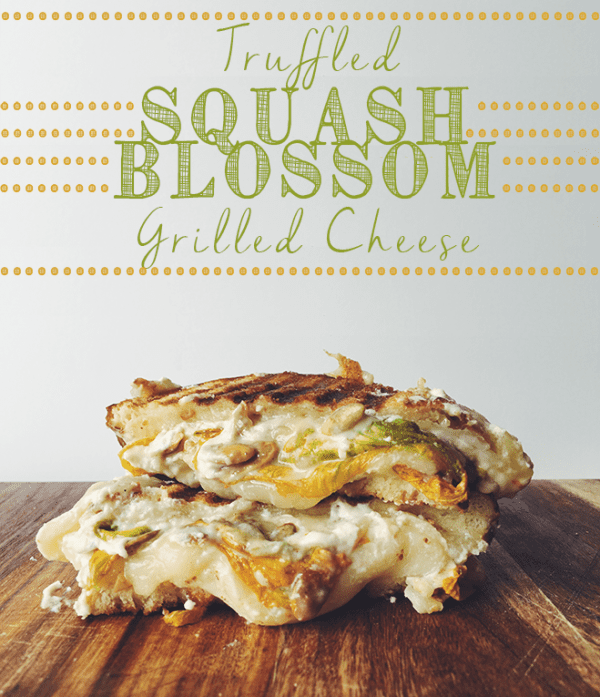 squash blossom grilled cheese social
