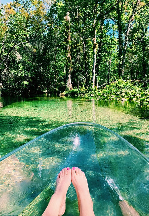clear kayak at rock springs kelly park kings landing florida
