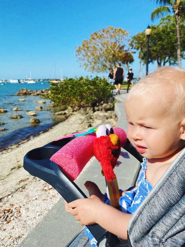Bay Front Park -What to do in Sarasota Florida