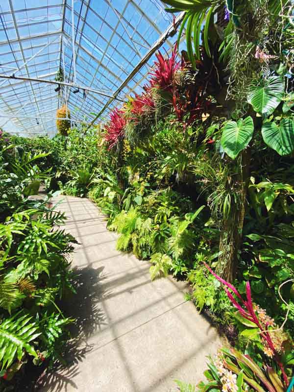 Selby Gardens - What to do in Sarasota Florida